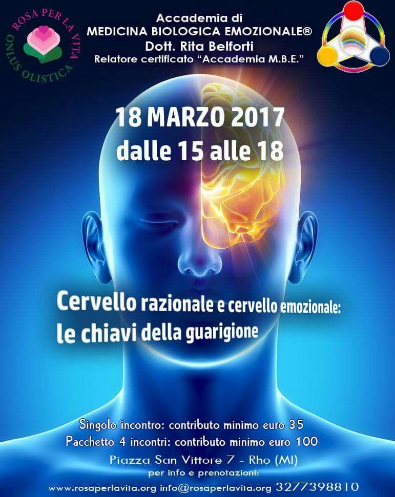 Cervello razionale e cervello emozionale: le chiavi della guarigione